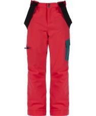 Dare2b DKW302-83A028 Kids deelnemen skibroek